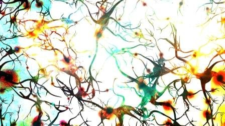 A dyed multicolored image in landscape showing a close-up of some neurones